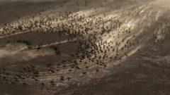 Dandanakan Savaşı