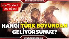 İllere göre Türk boyları şeması   Soy ağacı Sorgulama